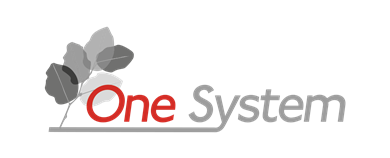 One System